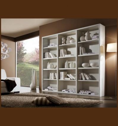 Biblioraft Modern Anda Lemn Masiv